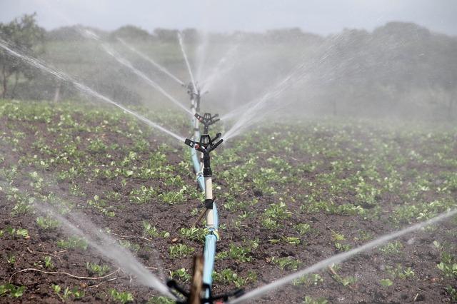 irrigation 588941 640