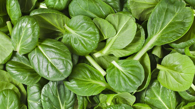 spinach 1501218 1280 Medium