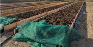 Impianto di lombricoltura produzione da reddito